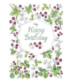 BD/Raspberry Branch Birthday