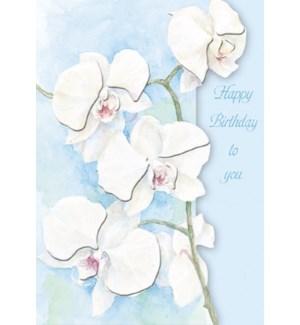 BD/Emb-White Orchid Birthday