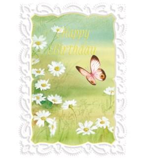 BD/Butterfly In Field (CG1334)
