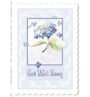 GW/Blue Hydrangea