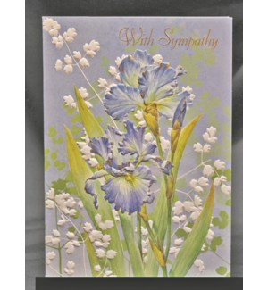 SY/Blue Irises