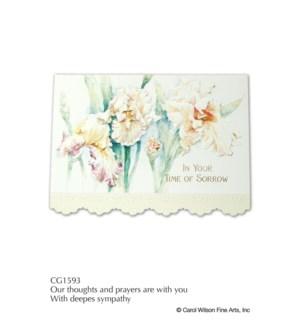 SY/Apricot Irises