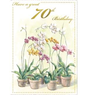 ABD/Orchid Pots 70th