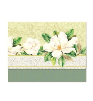 PORTFOLIO/White Magnolia