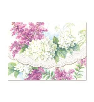 PORTFOLIO/White Hydrangeas