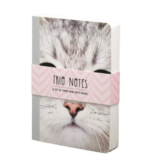 NBOOK/Trio Notebook-Kitten