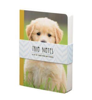 NBOOK/Trio Notebook-Puppy