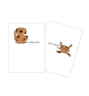BD/Brown Dog