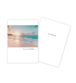 TY/Beach Scene