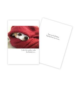 GW/Dog Under Blanket