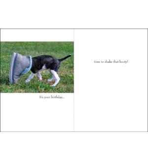 BD/It's your birthday . . .