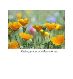 BD/Wishing you a day of...