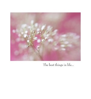AN/The best things in life...