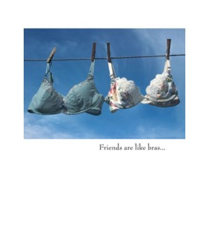 TY/Friends are like bras...
