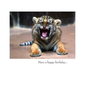 BD/Have a happy birthday