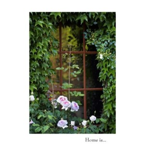 AN/Window With Ivy And Roses