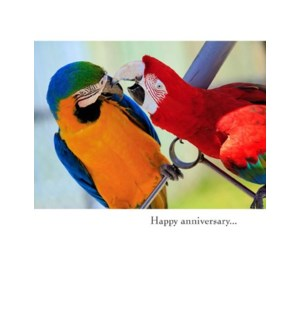 AN/Parrots