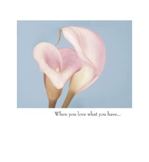 AN/When you love what