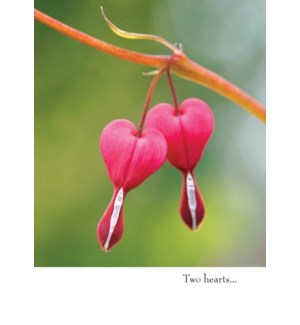 AN/Two Hearts