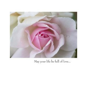 WD/May your life be full