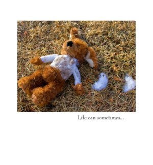 EN/Life can sometimes...
