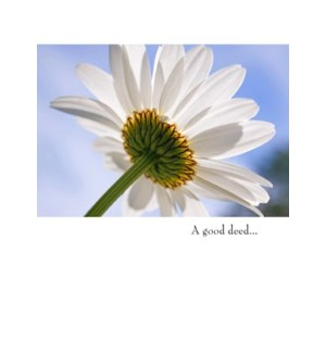 TY/A good deed...
