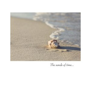 SY/The Sands Of Time