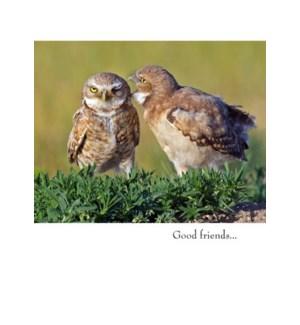FR/Good Friends