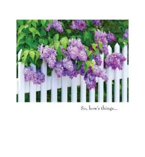 FR/Purple Flowers