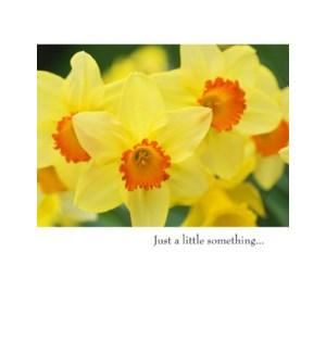 GW/Yellow And Orange Flowers