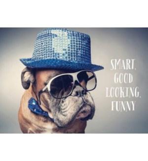 BD/Smart Good Looking Funny