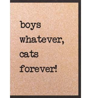EDB/Boys Whatever Cat Forever
