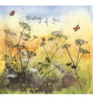 THB/Butterfly Meadow