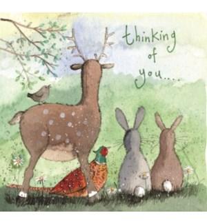 THB/Woodland Animals