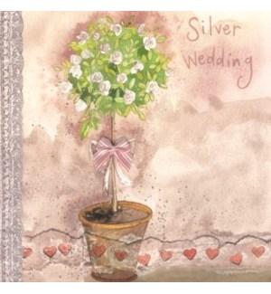 ANB/Silver