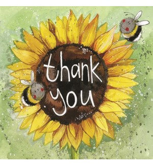 TYB/Thank You Sunflowers
