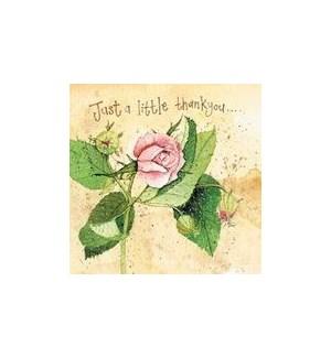 TY/Pink Rose
