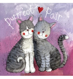 ROB/PURRFECT PAIR