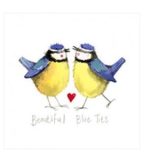 EDB/Beautiful Blue Tits