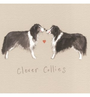 COASTER/Clever Collies