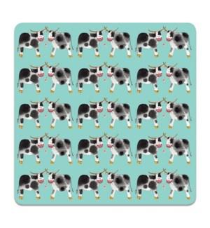 COASTER/Dairy Cows