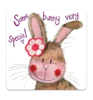 COASTER/Some Bunny