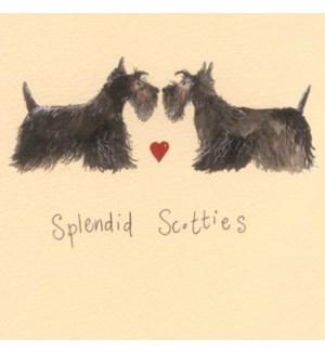 COASTER/Splendid Scotties