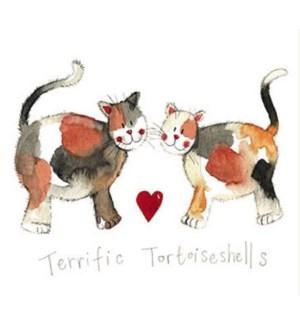 EDB/Terrfic Tortoiseshells