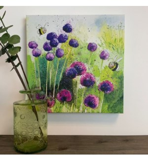 CANVAS/Alliums