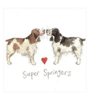 EDB/Super Springers