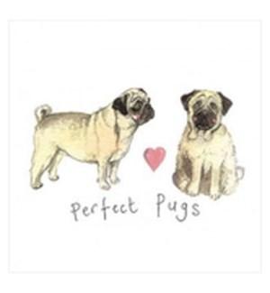 EDB/Perfect Pugs