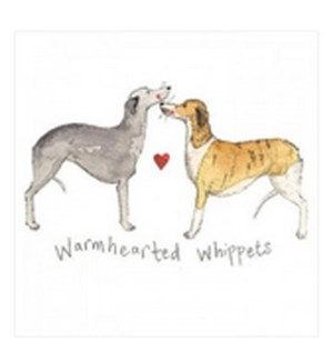 EDB/Warmhearted Whippets