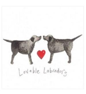 EDB/Lovable Labradors