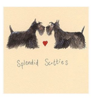 EDB/Splendid Scotties
